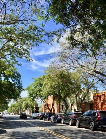 south park street